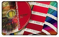 Printed Disc and Pantone Color Book Match